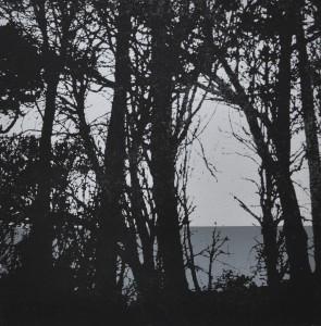 Trebah 2 - Screen print, edition of 5. (21 x 21 cm)